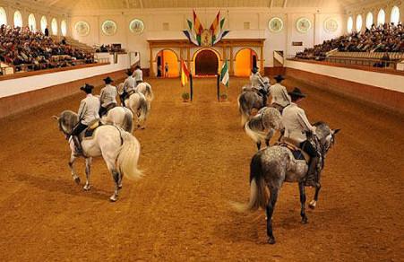 Real escuela caballos jerez