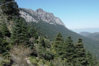 pico mas alto de la provincia de cadiz