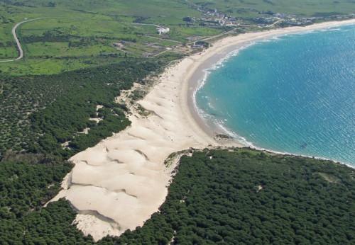 duna de la playa de bolonia