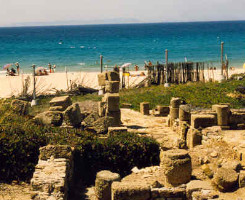 bolonia playa cadiz