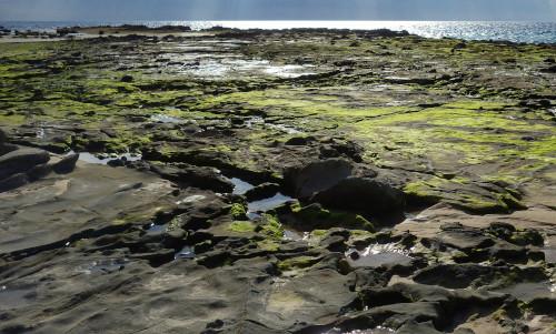 piedras playa de bolonia